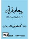 Picture of 16-GB (Card) Paigham-e-Quran